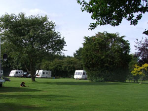 Caravan touring park, North Norfolk, dog friendly, adults only